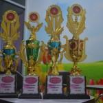 Piala-piala yang dibagikan kepada para murid berprestasi. Selamat bagi yang mendapatkannya.